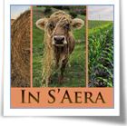 In S'aera - Paesaggi rurali e donne pastore